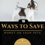 How to Save Money on Your Pets