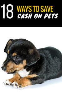 18-ways-save-on-dogs