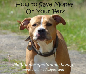 save-money-on-pets-small